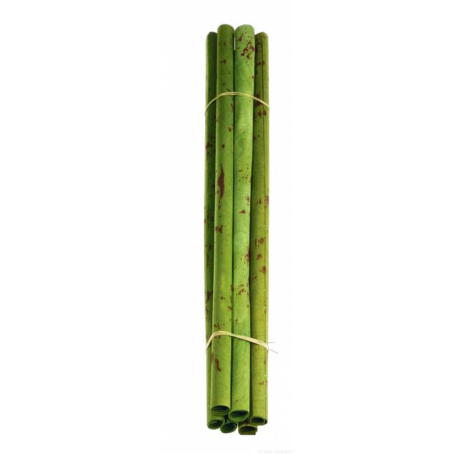 Ozdoba papirus 60cm
