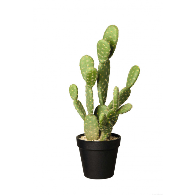 Ozdoba kaktus 41x12,5cm