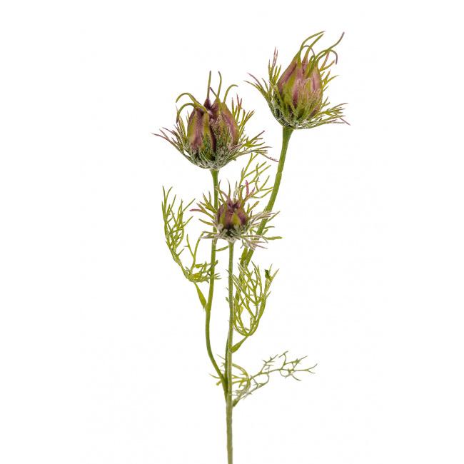 Kwiat oset 56cm