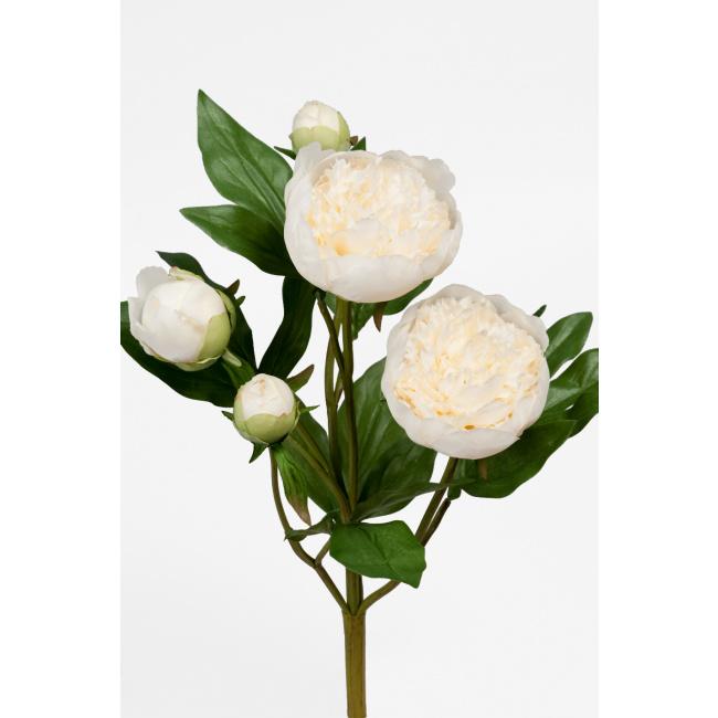 Kwiat peonia biała 40cm