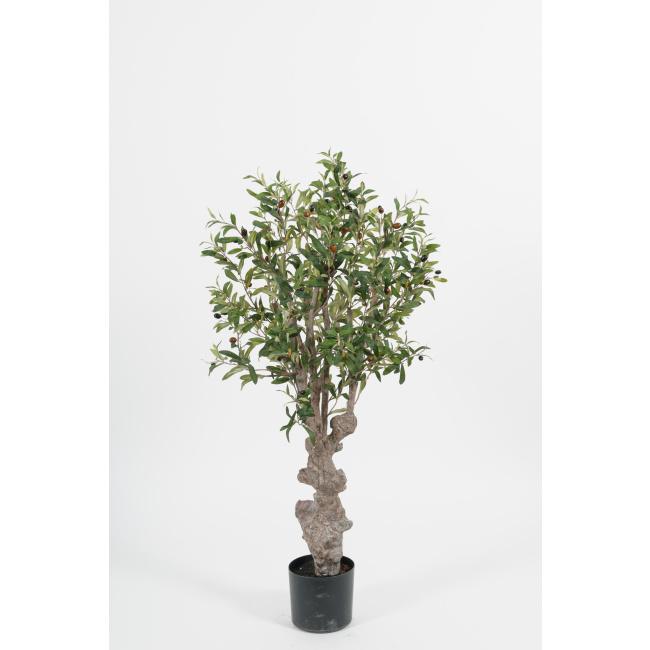 Drzewko oliwne 120cm