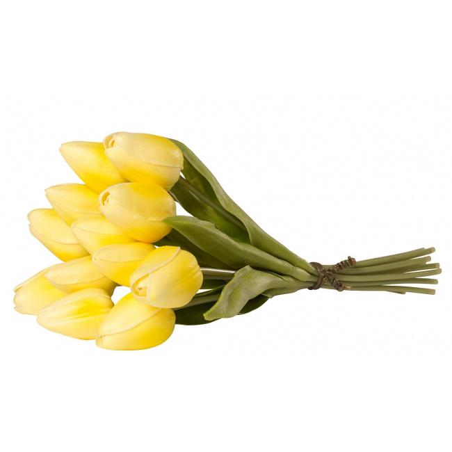 Tulipan bukiet żółty