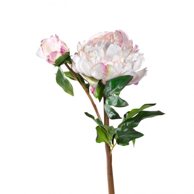 Kwiat Peonia 55cm