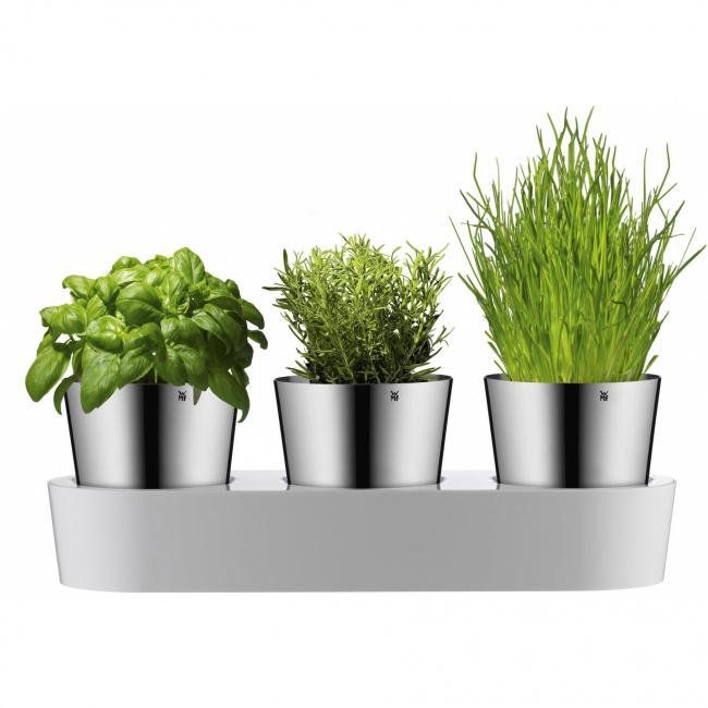 Doniczki na zioła samonawadniające