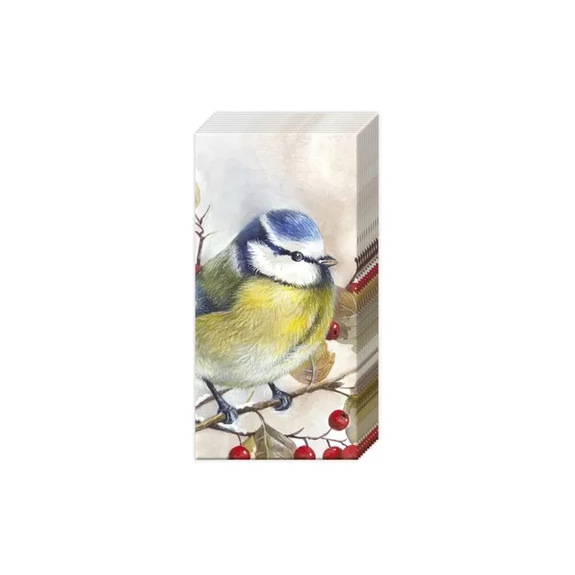 Chusteczki Sweet Bird 21x21cm 10szt.