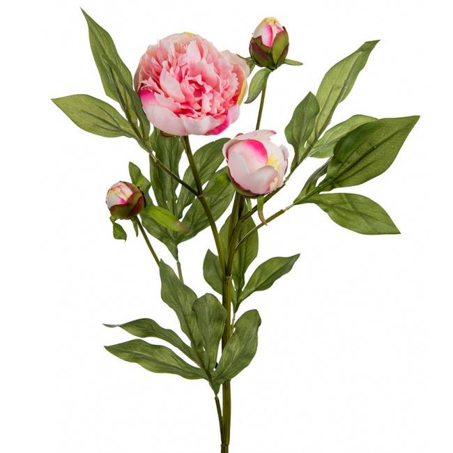 Kwiat Peonia 65cm