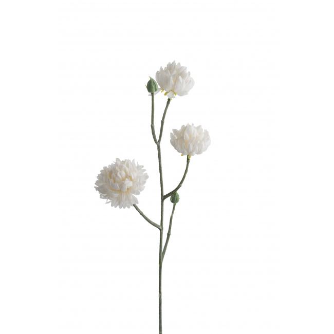 Gałązka kocanki biała 50cm