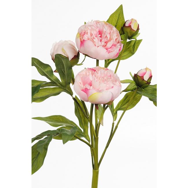 Kwiat piwonia różowa 40cm