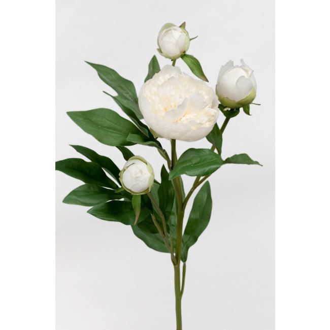 Kwiat piwonia biała 65cm