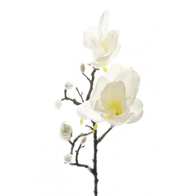 Gałązka magnolii biała 60cm