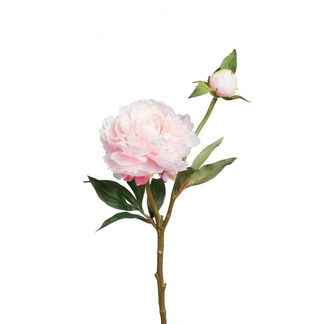 Kwiat piwonia różowa 35cm