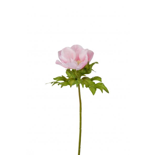 Kwiat zawilec różowy 43cm