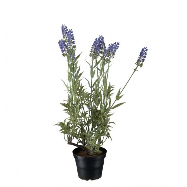 Kwiat Lawenda 45cm