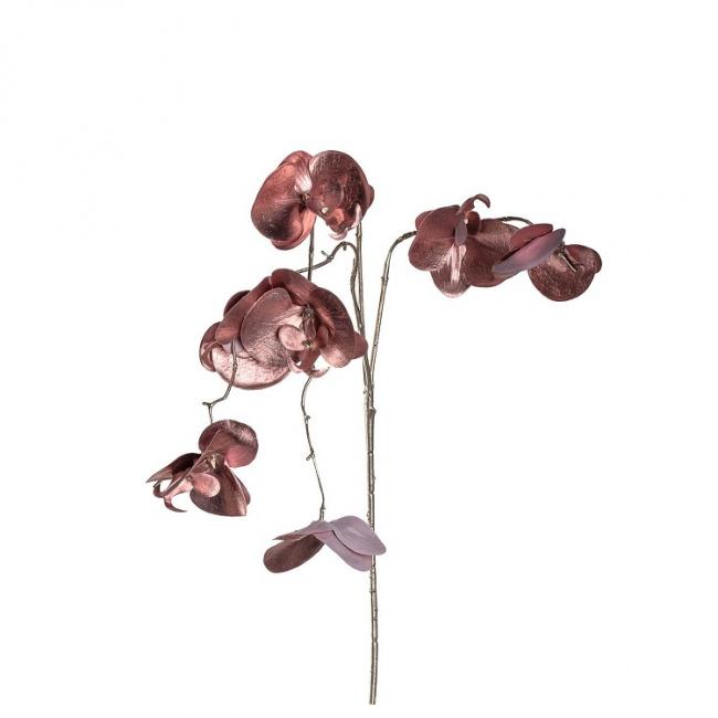 Gałązka Ornare 85cm Orchidea