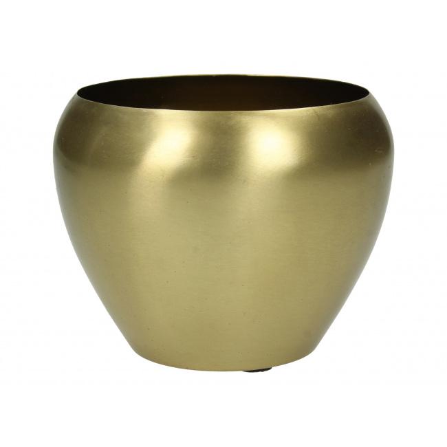 Osłonka 12cm złota