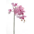 Gałązka Orchidea 75cm różowa