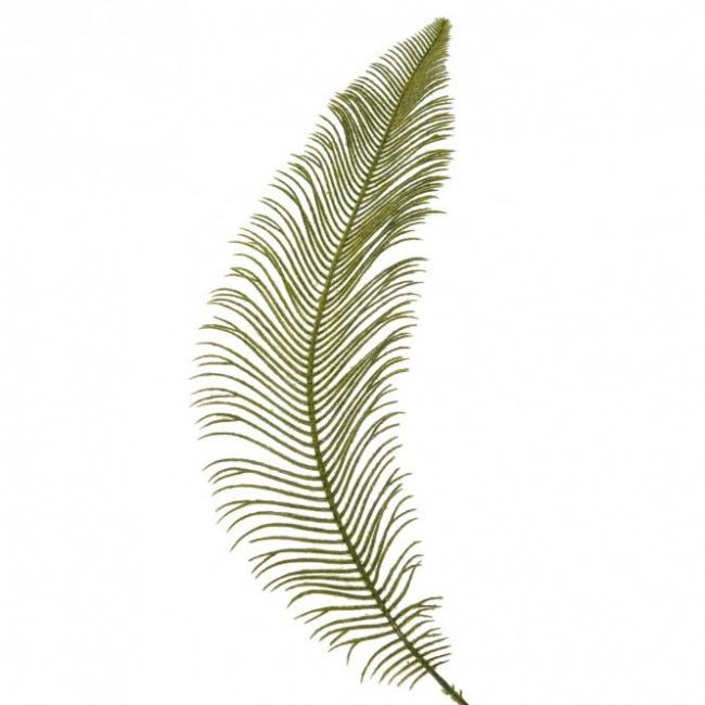 Liść paproci 60cm
