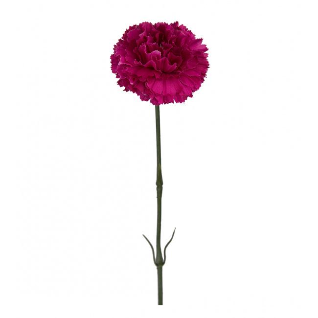 Goździk 55cm purpurowy