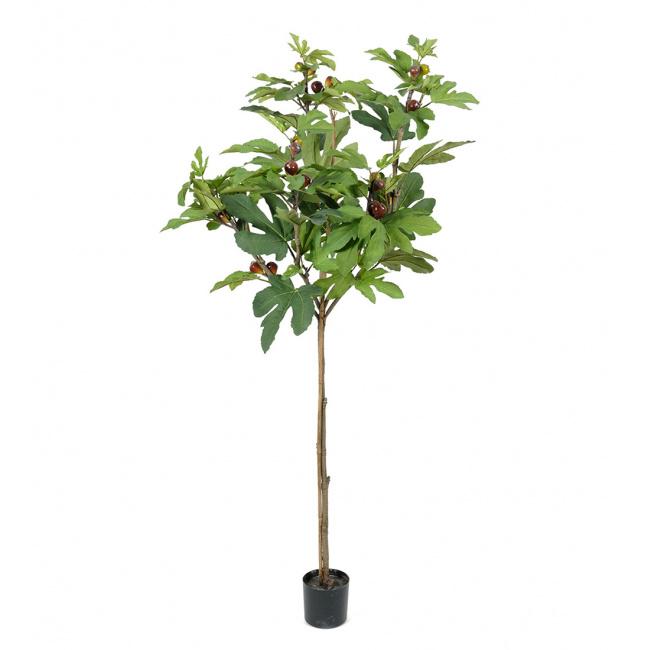 Drzewko figowe 150cm
