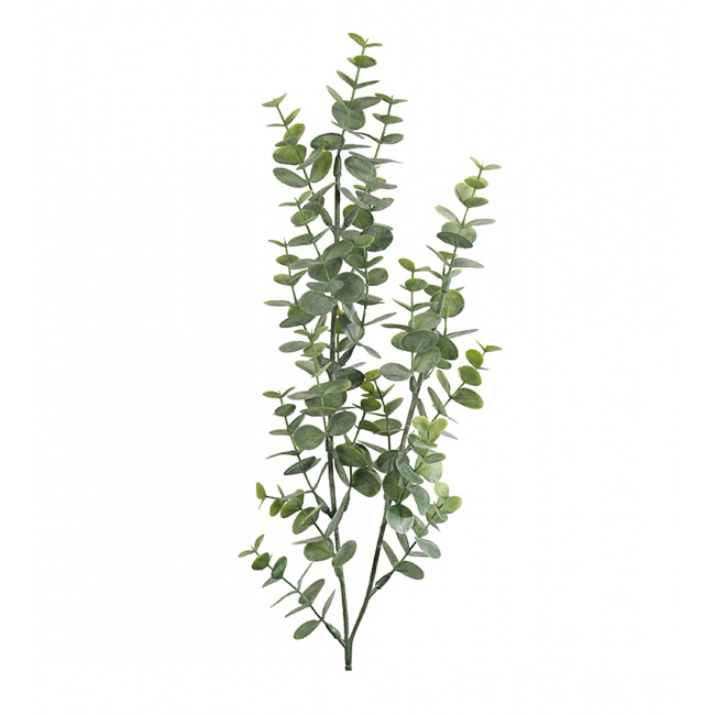 Gałązka eukaliptusa 74cm