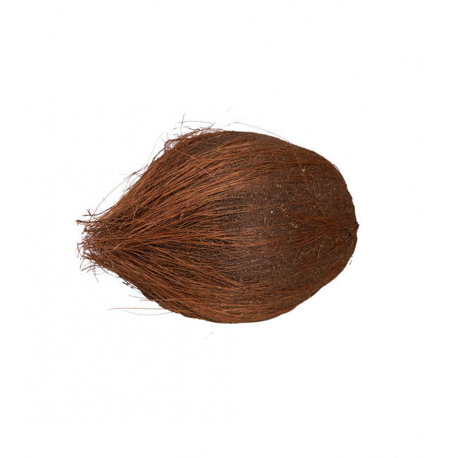 Ozdoba kokos 12x20cm