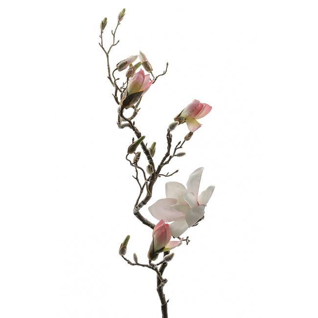 Gałązka magnolii różowej 135cm