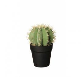 Ozdoba kaktus 25,5x12,5cm